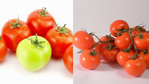 トマトとミニトマト