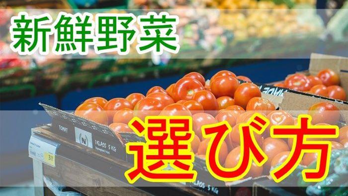 おいしい新鮮野菜の選び方「見る、触る、持つ」簡単見極め方法