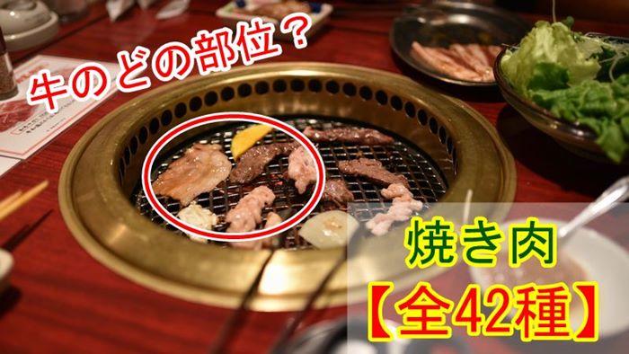 【全42種】牛一頭から取れる焼肉の部位と名称